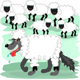 Wolf in sheeps clothing Stock Photography