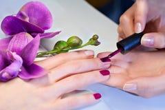 Woman applying nail varnish to finger nails Stock Images