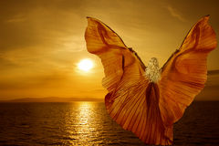 Woman transform butterfly wings, flying on fantasy sunset Stock Photos