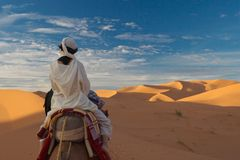 The woman in desert Stock Images