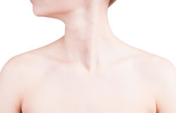 Woman's neck and shoulders Royalty Free Stock Photo