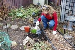 Women gardening Stock Photos