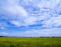 Wonderful sky Stock Image