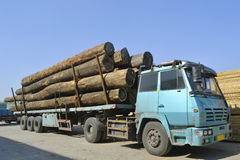 Wood transportation truck Royalty Free Stock Image