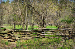 Wooded Property with Fence Royalty Free Stock Images