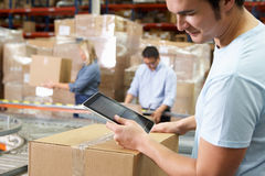 Worker Using Tablet Computer In Distribution Warehouse Royalty Free Stock Images