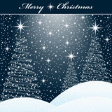 Xmas trees in the snow Royalty Free Stock Images