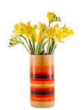 Yellow daffodils and freesias flowers in a vivid colored vase, close up, isolated, white background Stock Image