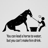 You can Lead a Horse to Water but You cannot Make Him Drink Royalty Free Stock Image