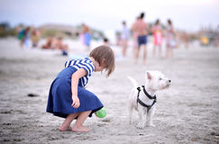 Young girl with a dog Royalty Free Stock Image
