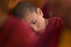 Young little child meditating with closed eyes at the regular puja. Stock Photo