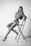 Young sexy beautiful blonde woman posing on chair Royalty Free Stock Photos