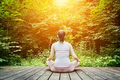 Young woman meditating in a forest. Zen, meditation, healthy breathing Stock Photos