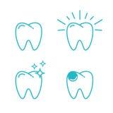 Zahnsatz Stockbilder
