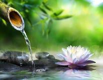 Zen garden with massage stones Royalty Free Stock Photo