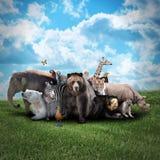 Zoo Animals on Nature Background Stock Photos